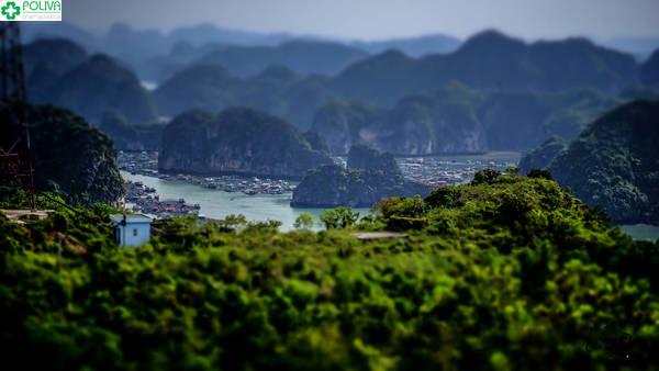 Vịnh Lan Hạ đẹp huyền ảo nhìn từ trên cao