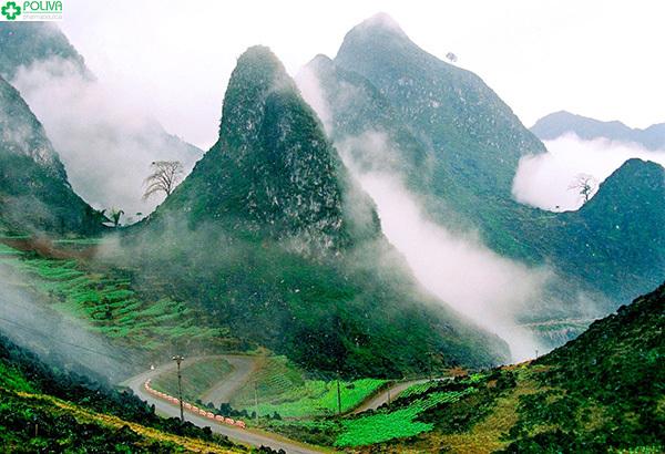 """Mây mù ở Đèo Mã Pí Lèng sẽ gây cản trở cho hành trình """"phượt"""" của bạn."""