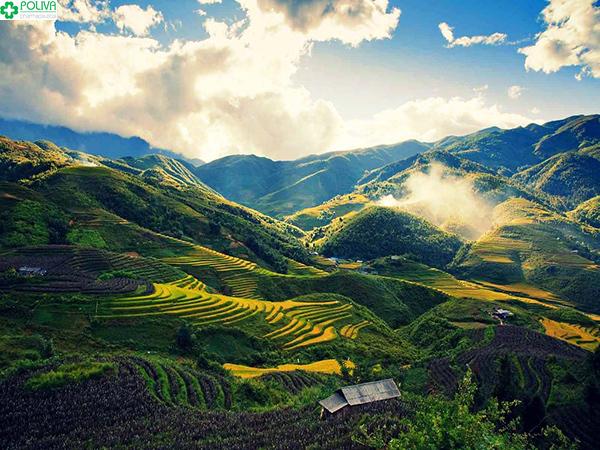 Vẻ đẹp của đèo Pha Đin.
