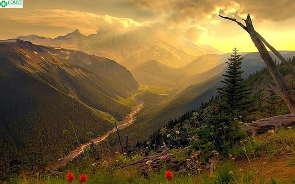 Phượt đèo Pha Đin vào mùa hè là thích hợp nhất.