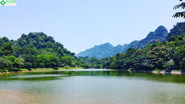 Vẻ đẹp của vườn Quốc gia Cúc Phương.