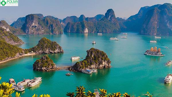 Vịnh Hạ Long là điểm đến hấp dẫn mà bạn không thể bỏ qua!