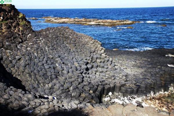 Những phiến đá đủ hình thù tại Gành Đá Dĩa