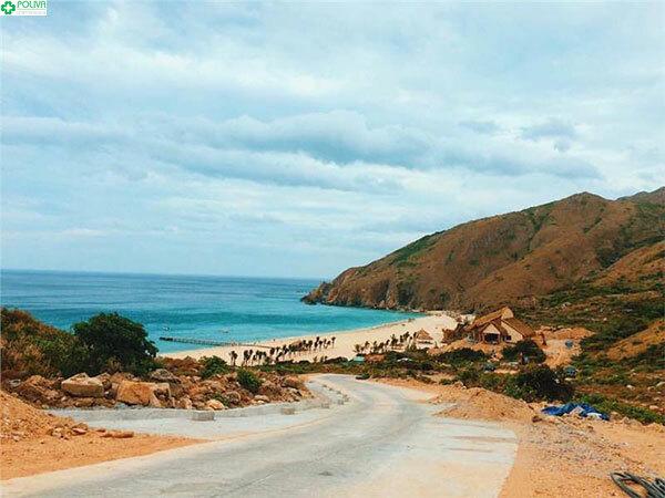 Bãi biển Kỳ Co tuyệt đẹp nhìn từ xa