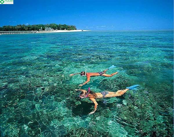 Lặn ngắm san hô là hoạt động vô cùng hấp dẫn tại nơi đây