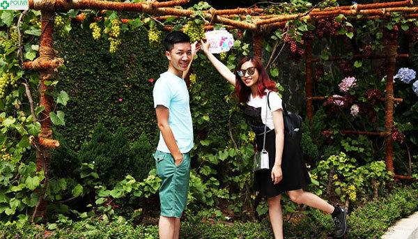 Đến Vườn Nho thưởng thức những quả chín mọng ngon lành