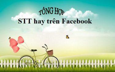 Những câu nói hay trên facebook làm STT thả thính, câu like cực chuẩn