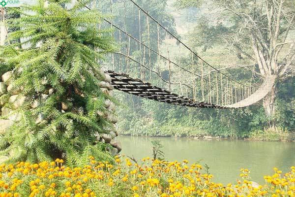 Cầu mây bắc qua sông không hề dễ đi với du khách