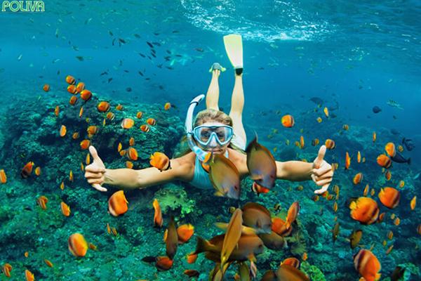 Lặn biển ngắm san hô là trải nghiệm khá thú vị.