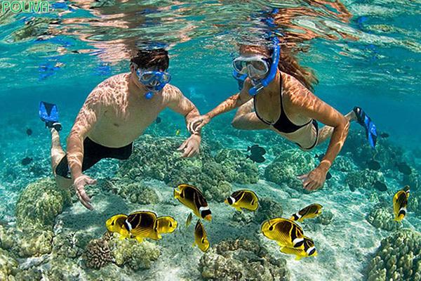 Đừng quên trải nghiệm lặn ngắm san hô bạn nhé!