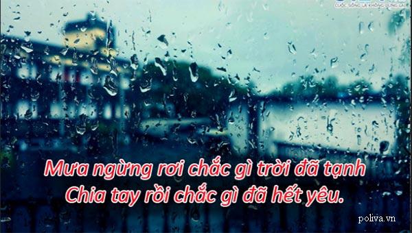 Ngắm mưa thấy buồn thì nhớ ngay đến câu nói hay này