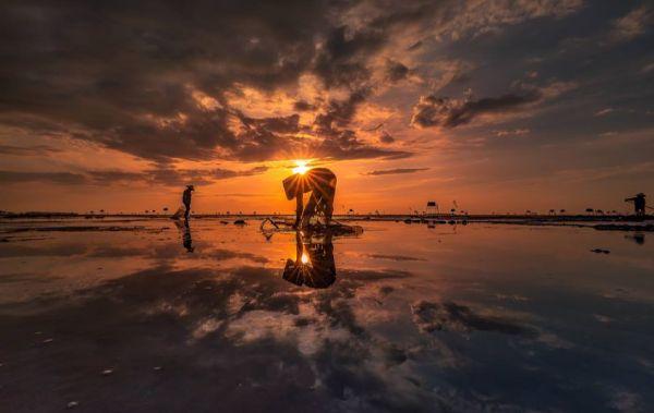 Ngư dân cào ngao trên bãi biển Đồng Châu