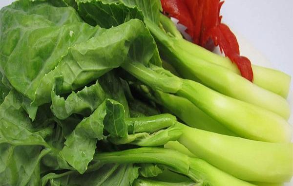 Búp cải làn thường mập mạp hơn so với các loại cải ở dưới xuôi