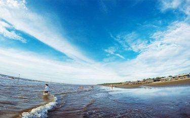 Cồn Vành Thái Bình điểm đến lý tưởng cho hè này