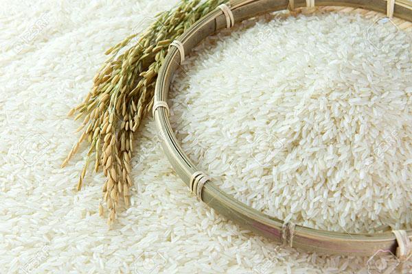 Hạt gạo đều nhau, trắng ngần