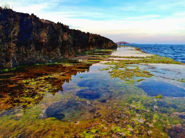 Thềm đá san hô tại Hòn Đỏ