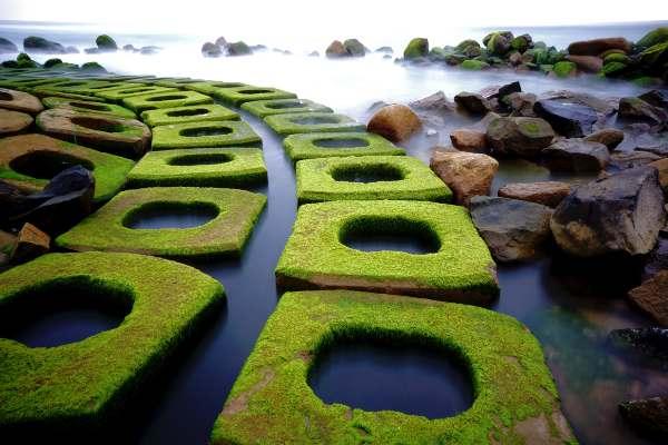 Bãi rêu xanh đẹp hút hồn khách du lịch