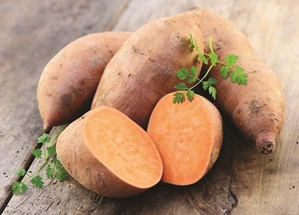Khoai deo là giống khoai lang đỏ trồng ở Quảng Bình