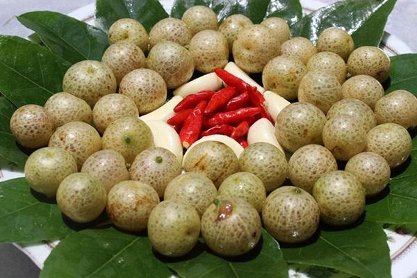 Quả và lá mắc mật đều được sử dụng để chế biến thức ăn