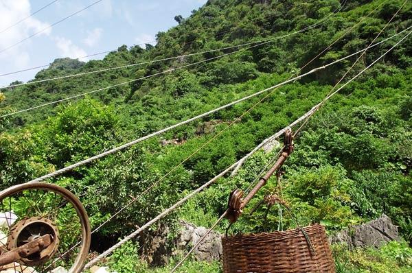 Các ròng rọc để thu hoạch na từ trên đỉnh núi xuống