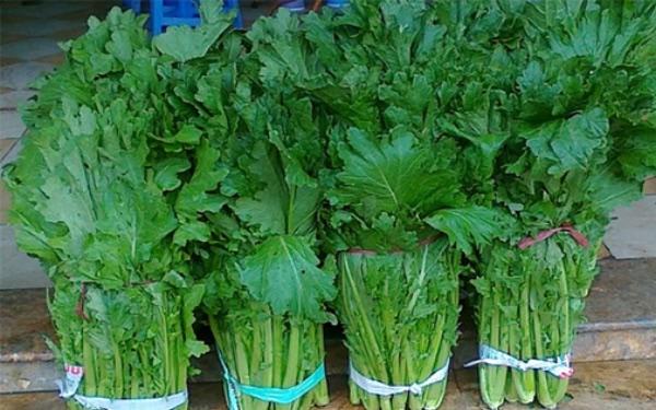 Thưởng thức món rau cải mèo đặc sản mùa lạnh của người dân Sapa