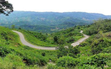 Du lịch rừng thông Măng Đen để vơi bớt nhớ nhung Đà Lạt