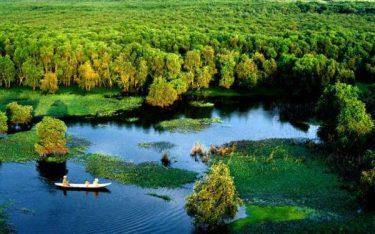 Bỏ túi những kinh nghiệm khi đi khám phá khu rừng U Minh Thượng