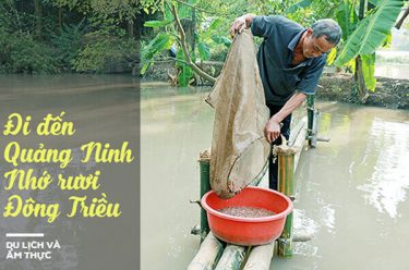 Rươi Đông Triều Quảng Ninh – Đặc sản đất mỏ thơm ngon khó cưỡng!