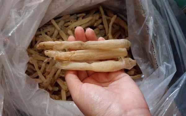 Sá sùng khô Hải Phòng: Đặc sản hương vị biển khó quên