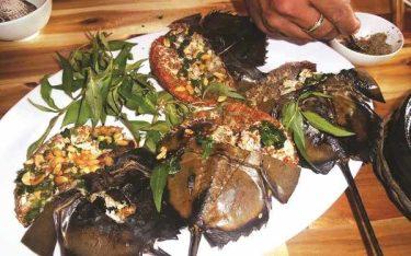 Sam biển hấp dẫn khách du lịch khi đến với Quảng Ninh