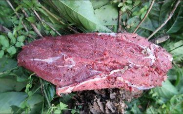 Tam Đảo lôi cuốn du khách người bằng thịt bò tái kiến đốt