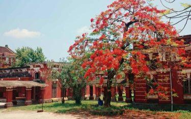 Tham quan trường Quốc học Huế: Đắm mình trong kí ức xưa