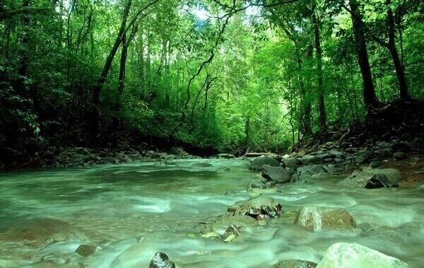 Suối Lưu Ly với dòng nước trong xanh