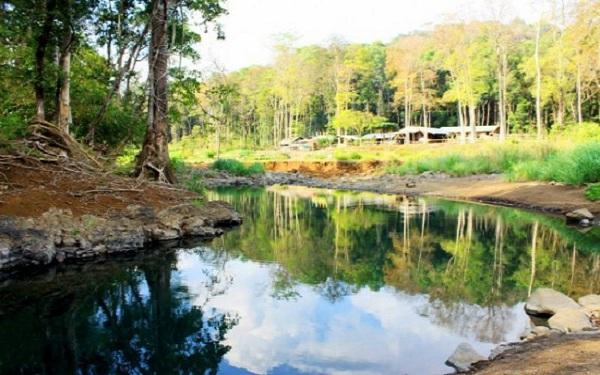 Vườn Quốc gia Bù Gia Mập: Kinh nghiệm du lịch và tham quan