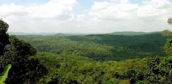 Toàn cảnh Vườn Quốc gia Bù Gia Mập với diện tích cực rộng lớn