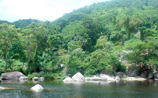 Khám phá vườn quốc gia Chư Yang Sin Đắk Lắk huyền bí, hoang sơ