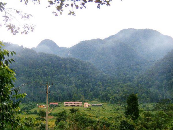 Không khí trong lành tại Vườn Quốc Gia Xuân Sơn vào buổi sớm