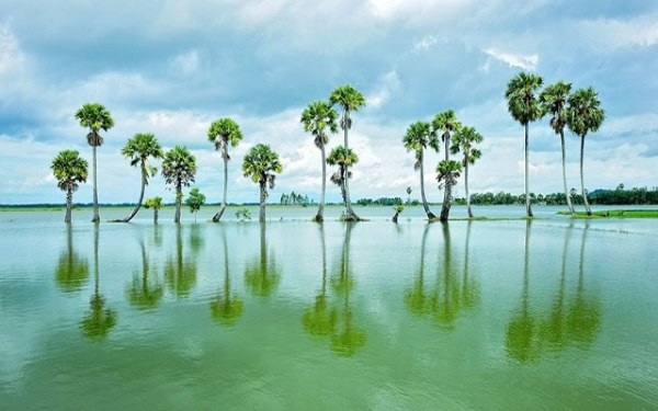 Ngắm Búng Bình Thiên vào mùa nước nổi