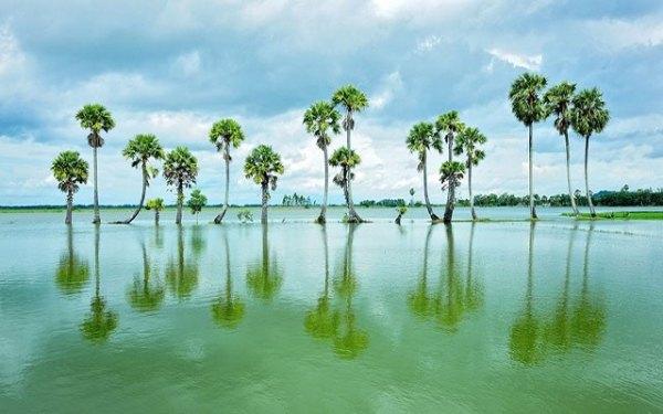 Búng Bình Thiên – Hồ nước ngọt trời ban ở An Giang
