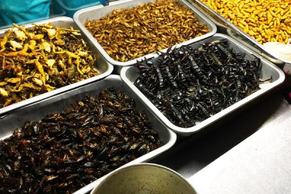 Nhiều món ăn côn trùng được bày bán tại chợ