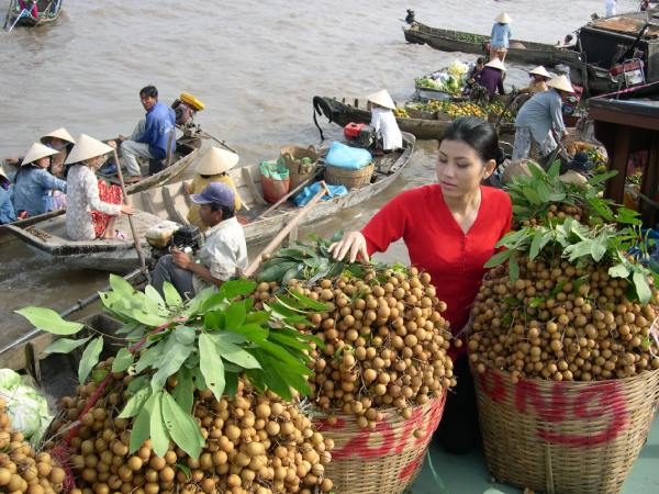 Người dân đem trái cây ra chợ bán cho khách thập phương