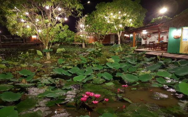 """Vườn sinh thái Xẻo Nhum """"đốn tim"""" du khách với homestay sắc màu"""