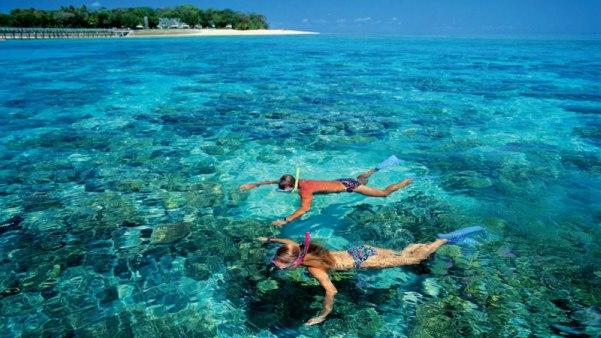 Lặn biển là hoạt động giải tri yêu thích ở Bãi Sao