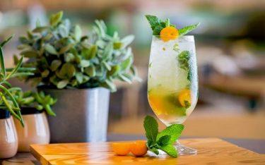Beertail là gì? Thưởng thức hương vị Beertail được biến tấu từ ly Cocktail