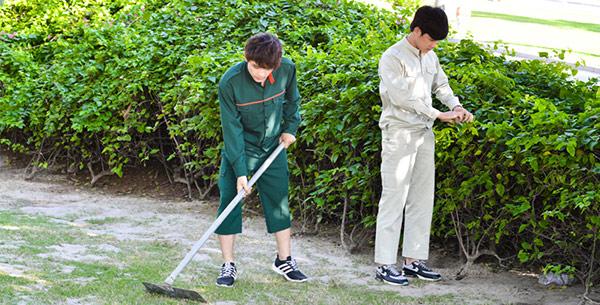Nhân viên làm vườn phải là người am hiểu về cây cảnh