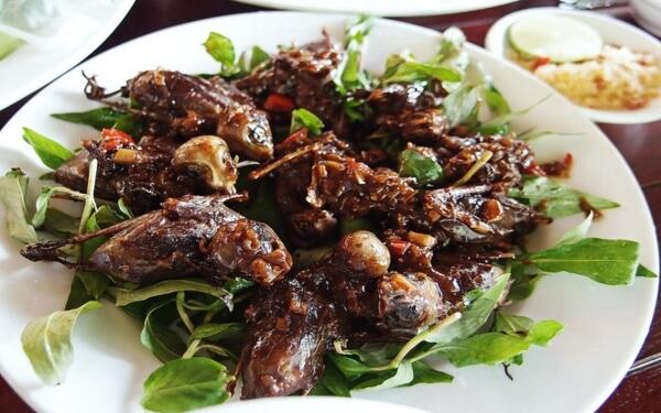 Chim mía: Đặc sản lừng danh của Quảng Ngãi nhất định phải thử