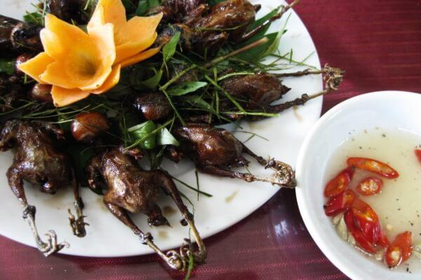 Chim có thể chế biến thành các món ăn ngon và bổ dưỡng