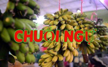 Chuối ngự Hà Nam: Đặc sản tiến vua giúp dân xóa đói giảm nghèo