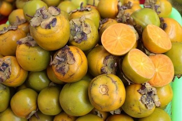 Những trái hồng mang lại nguồn thu nhập cao cho người dân xứ Lạng