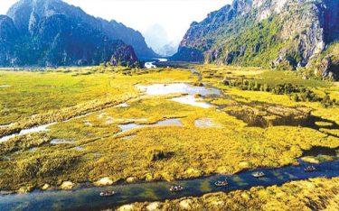 Khu bảo tồn thiên nhiên Vân Long đep tựa bức tranh thủy mặc